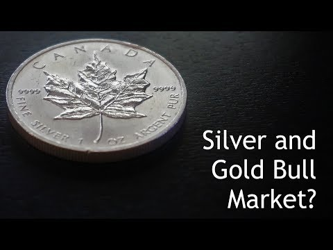 Has the Silver and Gold Bull Market Begun?