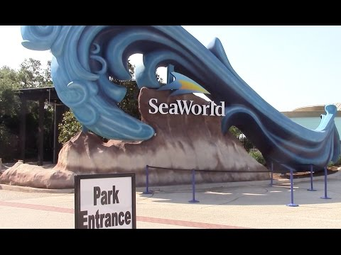 SeaWorld San Antonio Full Review