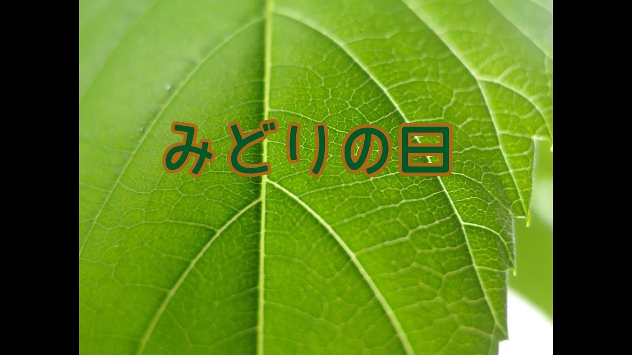 みどりの日【Greenery Day】 | 日本文化