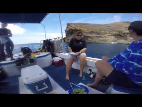 Niihau with Fathom 5 divers kauai, hawaii
