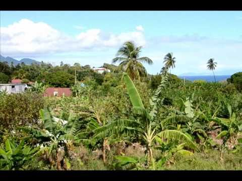 Dominica: Jacoway Inn - Calibishie