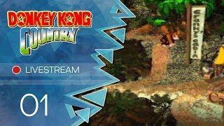 Donkey Kong Country [Livestream] - #01 - Zurück in den Dschungel
