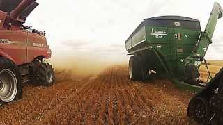 GoPro footage Case 9230 harvesting in canada