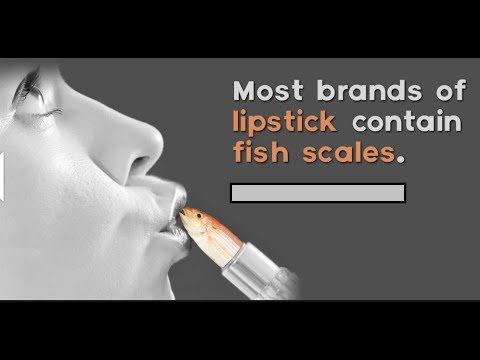 Most Brands Of Lipstick Countains Fish Scales