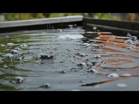 n 39 utilisez pas l 39 eau de pluie pour laver votre linge youtube. Black Bedroom Furniture Sets. Home Design Ideas