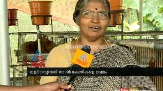 Hi-tech poultry farming in Terrace  : Asianet News Special