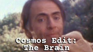 Cosmos Edit: The Brain