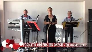 Formatia ORFEUS din ONESTI   2015   Colaj sarba   Tel 0745431679  clip 25 mkv