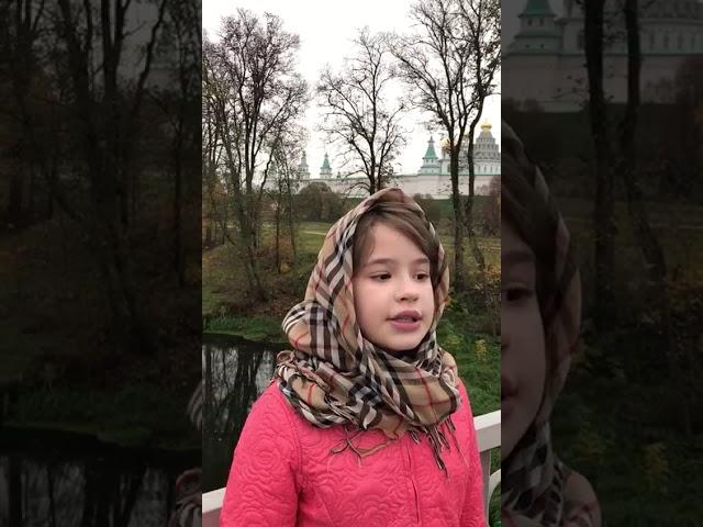 Изображение предпросмотра прочтения – АллаБезина читает произведение «Песни, песни, о чем вы кричите...» С.А.Есенина