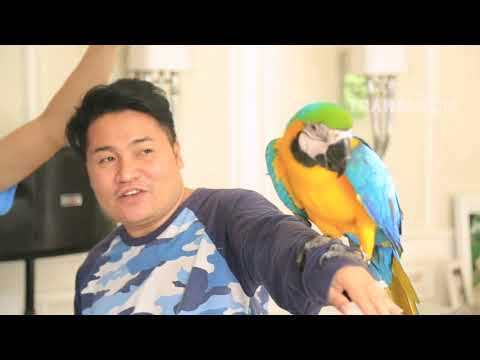 JANJI SUCI - Weekend Bersama Banana, Peliharaannya Raffatar (26/11/17) Part 1