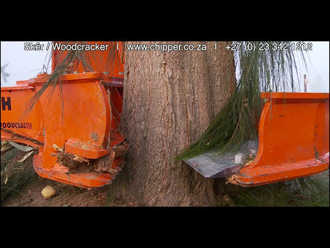 Sker Woodcracker Africa Biomass Company. Removal of alien trees to restore original floral kingdom.