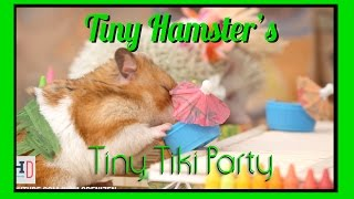 Repeat youtube video Tiny Hamster's Tiny Tiki Party (Ep. 6)