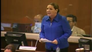 Sesión 461 del Pleno (20-06-2017)