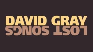 """David Gray - """"January Rain (Instrumental)"""""""
