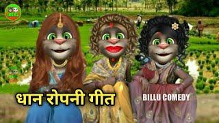 धान रोपनी बिल्लू गीत || Billu dhan ropai geet || Billu maghi geet || Bhojpuri billu geet