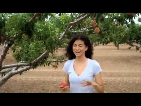The Rawfully-Organic Co-op: A Trip to Gundermann Farm!
