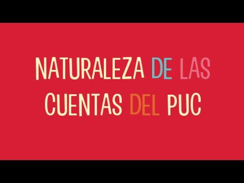 Naturaleza de las cuentas del PUC  2015
