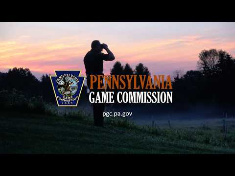 Behind The Beauty Of The Commonwealth Is The Pennsylvania Game Commission
