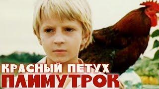Красный петух Плимутрок (1975). Семейный, детский фильм   Золотая коллекция