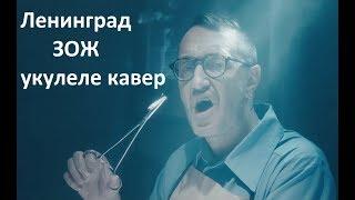 Ленинград — ЗОЖ. Укулеле кавер. 18+