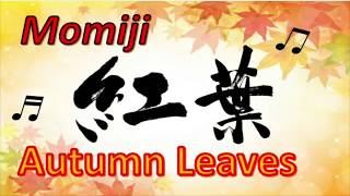 紅葉  もみじ 🍁 【Japanese Autumn Leaves' Song】Momiji