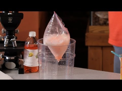 How to Explode a Plastic Bag   Science Projects
