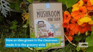 How an idea grown in the classroom made it to the grocery aisle