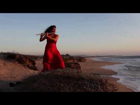 STING Fields of Gold Flute Cover Viviana Guzman