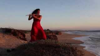 Скачать STING Fields Of Gold Flute Cover Viviana Guzman