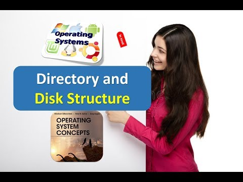 Directory and Disk Structure in Operating Systems in HINDI