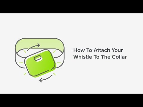 How To Attach Your Whistle GO Tracker To The Collar