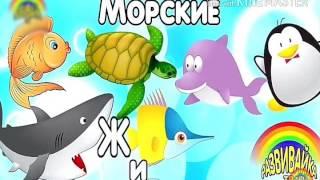 Первое видео канала! Учим морских животных и собираем пазлы