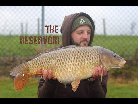 The Reservoir || Carp Fishing November 2017