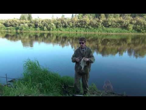 рыбалка на леща осенью на донку видео