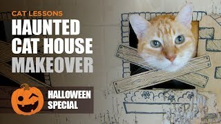 Halloween Haunted Cat House Makeover