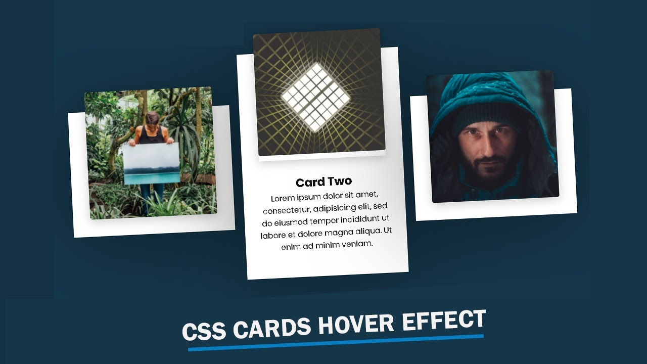 CSS Card Hover Effects   Html & CSS Tutorial