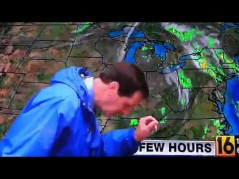 hqdefault weather man eats a bug youtube