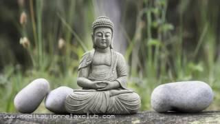 Qigong Healing 1 HOUR Qigong Meditation Music for Taoist