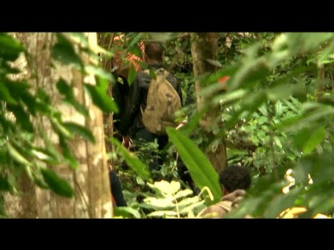 A Must watch Documentaries  - A Deadly Journey to Reach America through thick Jungles of Panama