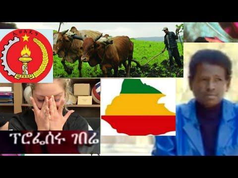 #ETHIOPIA Addis Ababa university professors  into Farmer ከፕሮፌሰር ወደ አርሶአደርነት  የሚያሳዝ ታሪክ,