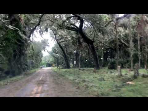 Hurricane Matthew Florida - Deltona Volusia County
