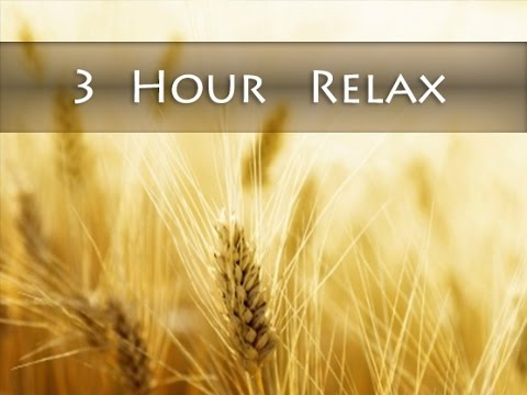 3 Hour Reiki Music: New Age Music; Relaxing Music; Relaxation Music; Gentle Music 🌅477