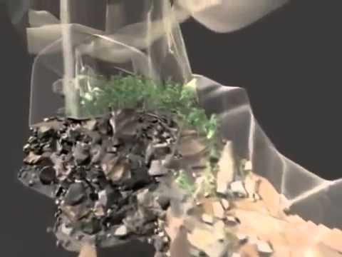 Son Doong Cave – 3D Models