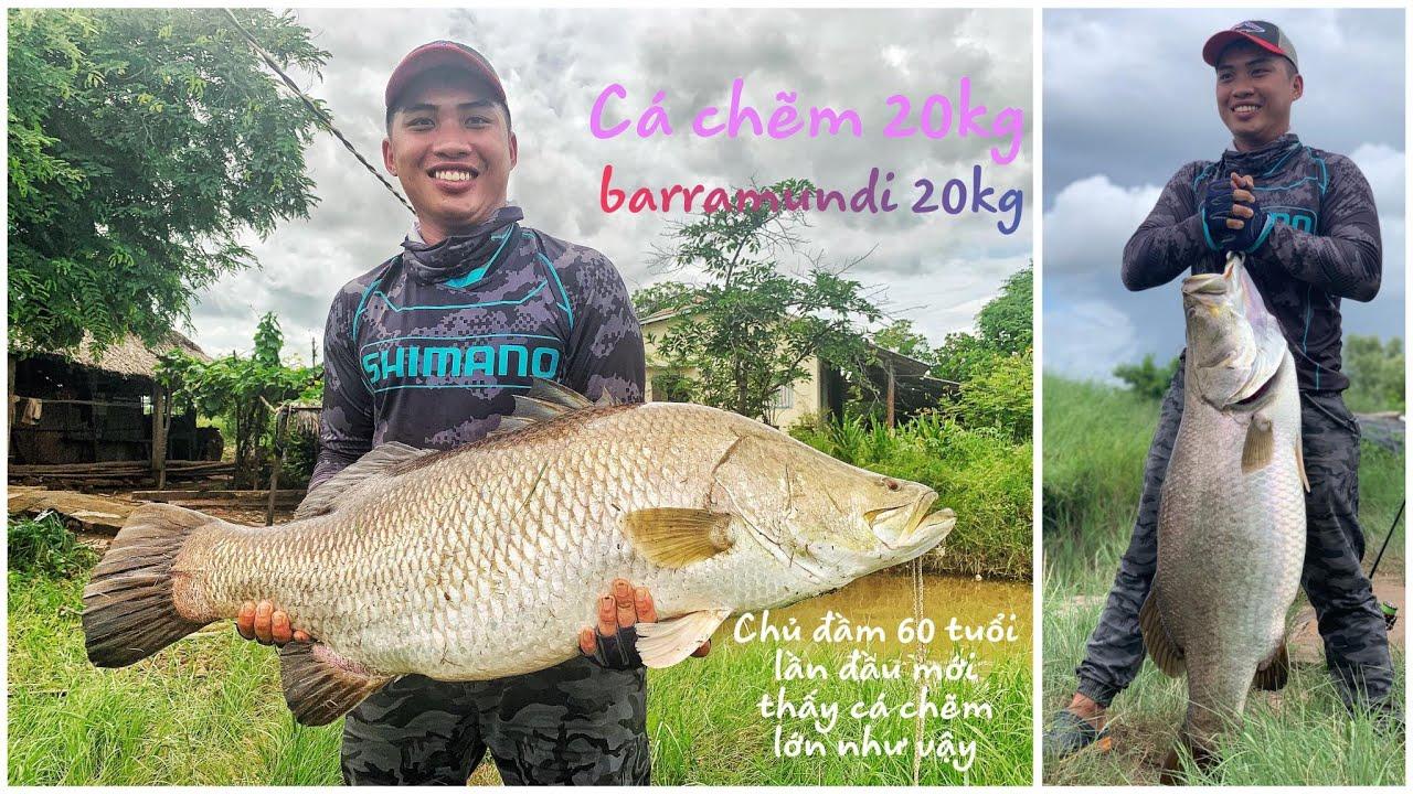 Câu được cá chẽm khủng 20kg bằng mồi giả ( lure ) ,fishing barramundi monster in viet nam ( 2020 )