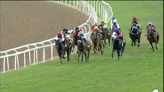 Vidéo de la course PMU SHORT HEAD PINNACLE STAKES