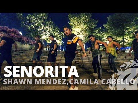 SENORITA By Shawn Mendes,Camila Cabello | Zumba | Pre Cool Down | TML Crew Kramer Pastrana