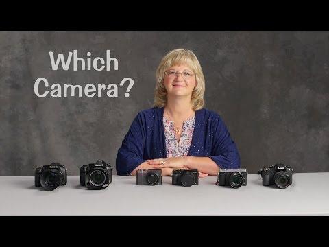 Which Lumix Camera?