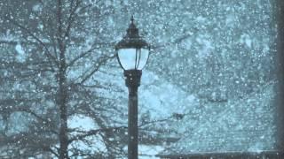 Snow - Raleigh, NC Jan. 17th 2016