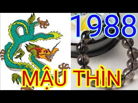 Vòng Tay Cho Tuổi 1988 | Trang Sức Cho Tuôi Mậu Thìn | Đá Phong Thủy