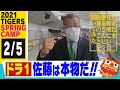 【沖縄キャンプダイジェスト特別編】たまたま宜野座に掛布さんがいらっしゃったのでドラ1佐藤輝明選手について&若手のイチ押し選手を聞いてみました!応援番組「虎バン」ABCテレビ公式チャンネル